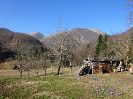 Monte Nona da Palagnana