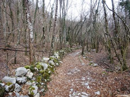 Palagnana sentiero