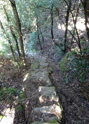 Anello Campiglia-Schiara-Monesteroli-Fossola - Scendendo il sentiero 504C