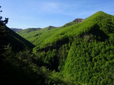 Alta Val Ozola