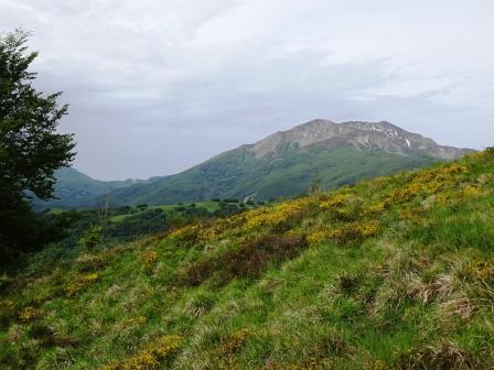 Sentiero Passo Pratizzano Monte Ventasso, Alpe di Succiso e Monte Casarola