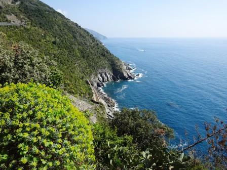 costa fra Vernazza e Corniglia