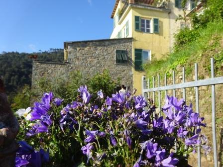 Porciana presso Volastra lungo il sentiero 586 proveniente da Corniglia