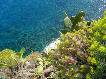 mar Ligure sotto Corniglia