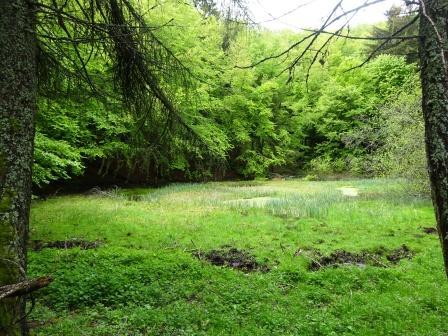 Ventasso Lago Verde