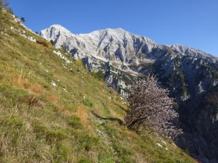 Val di Resia Monte Canin