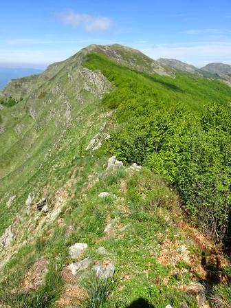 Verso Monte Brusa