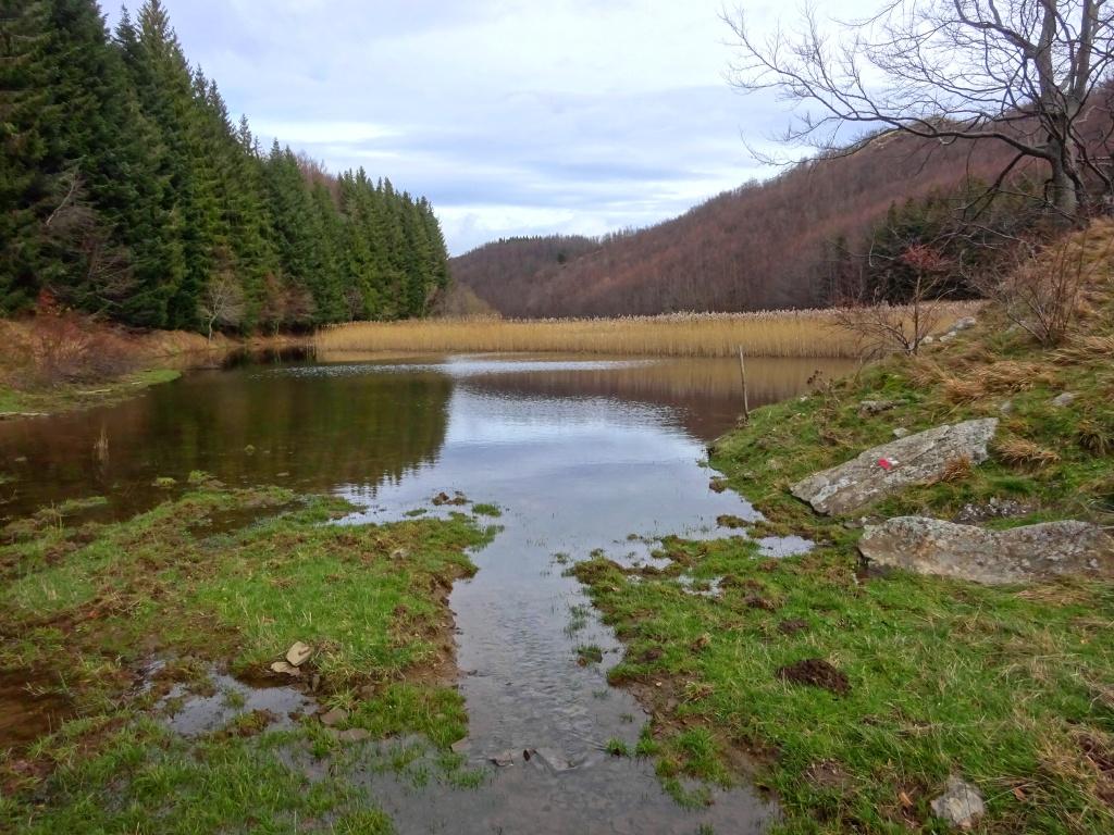 Lago Pratignano sponda sud