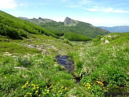 Appennino parmense, Lagoni, alta valle di Badignana con Roccabiasca