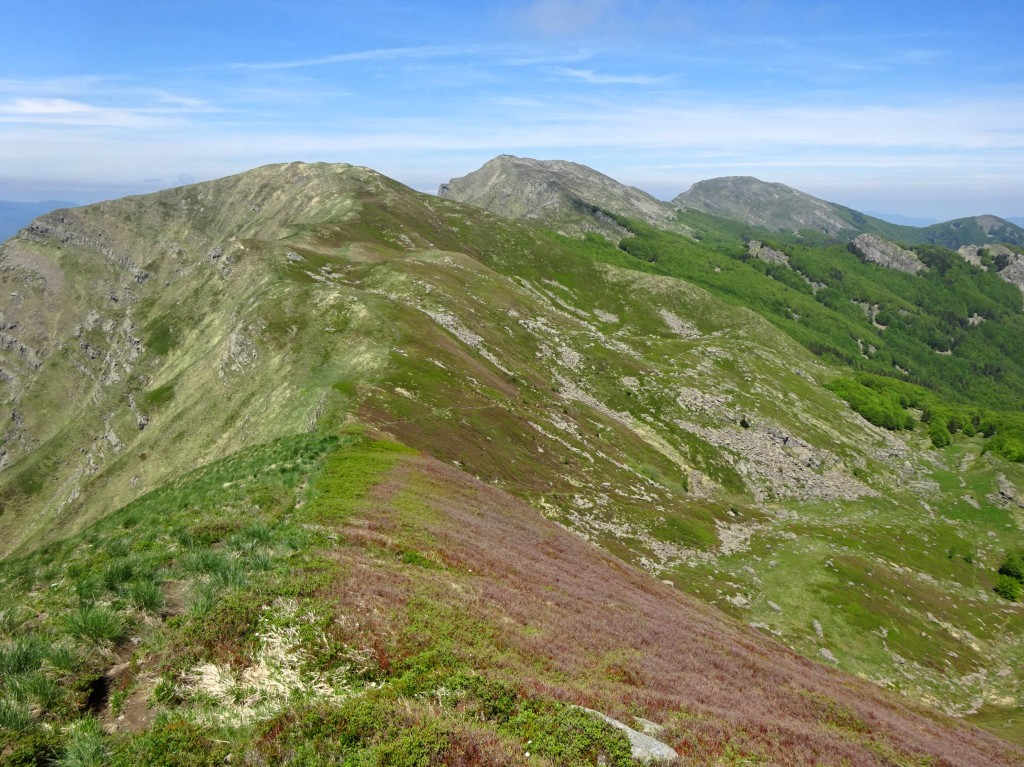 Monte Brusa guardando monte Aquila Marmagna e Orsaro