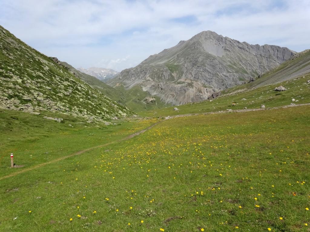 Sentieri Parco nazionale dello Stelvio Alpe Trela