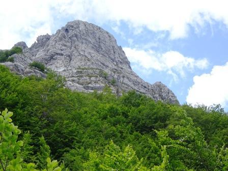 Monte Grondilice