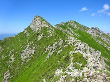 cresta Passo del Cerreto Monte Alto