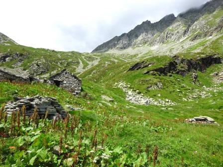 Alpe Scarone Alta Valle Antrona