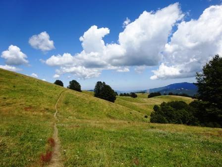 Monte Tavola