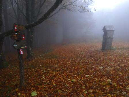 Pilastrino votivo Poggio Scali Parco Foreste Casentinesi