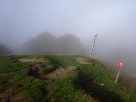 Poggio Scali Parco Foreste Casentinesi