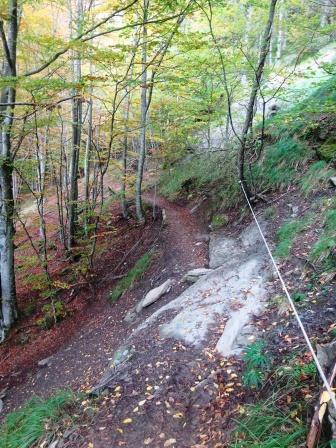 Sentiero MTB8 Foreste Casentinesi corda