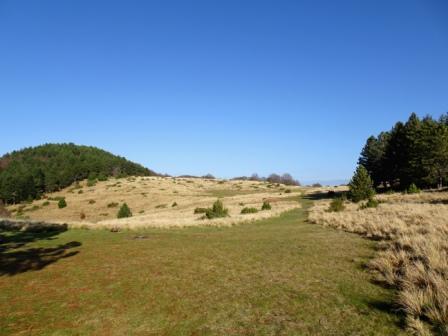 Monte Borla prateria