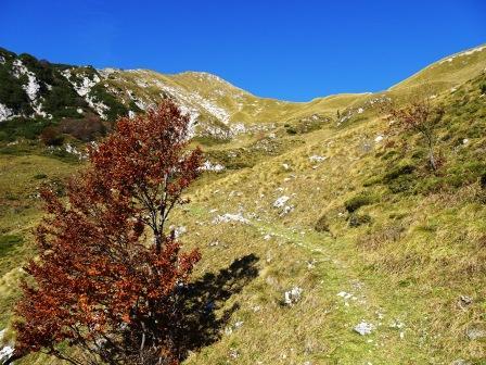 Sentiero 727 Monte Zaiavor