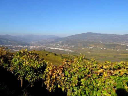 Colline di Monteforte d'Alpone, vista sul Carega