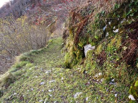Sentiero Bocchetta di Zaiavor a Sant'Anna di Carnizza