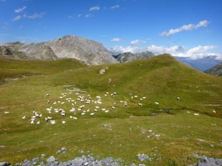 Escursione Altopiano della Gardetta
