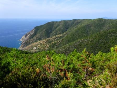 Punta Baffe sentiero verde azzurro