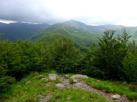 Monte Spigolino