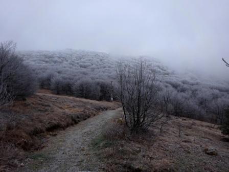 Passo Faiallo Monte Reixa