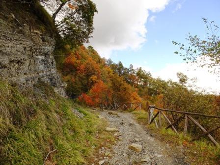 sentiero 201 Bagno di Romagna