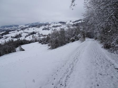 Palagano sentiero 578