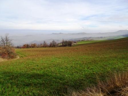 Sentiero 566 Prignano-San Pellegrinetto