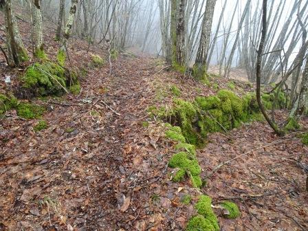traccia sentiero Rio Gelana
