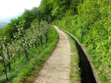 sentiero roggia di Marlengo meleti
