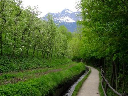 Sentiero roggia di Marlengo Cigot