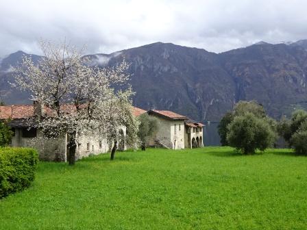 Bellagio Oliverio