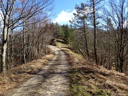 sentiero 553 Colle Tramazzo