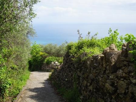 Sant'Andrea di Rovereto sentiero Madonnetta Chiavari