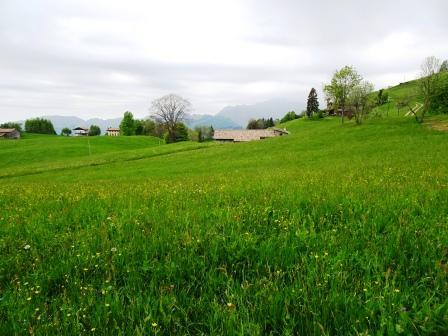 Monte Farno