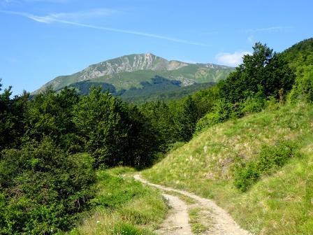Monte Casarola