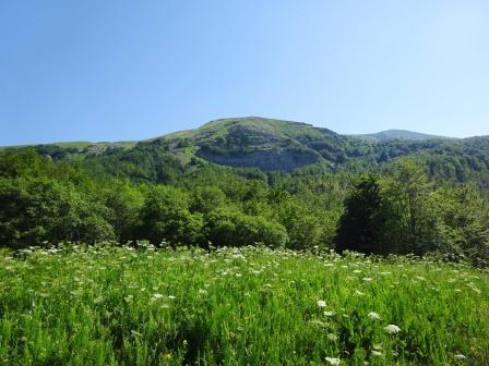 Monte Casarola sentiero 669