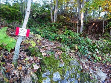 sentiero 503 Faidello Monte Gomito