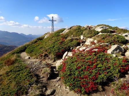 Monte Gomito croce