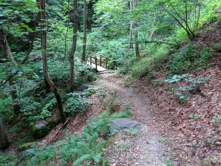 sentiero Pialpetta Alboni
